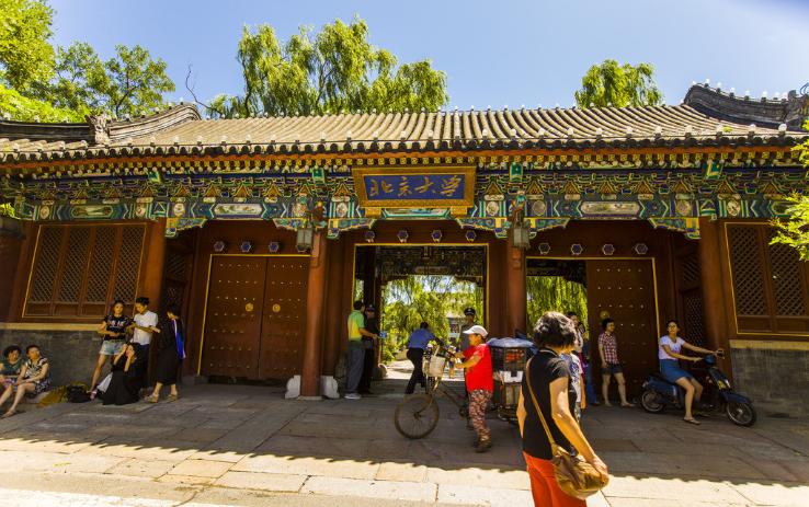 北京大学的苗