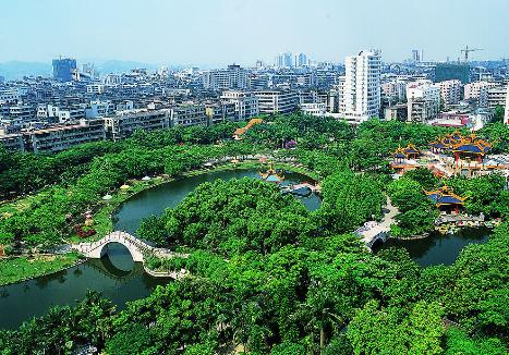 城市的风景
