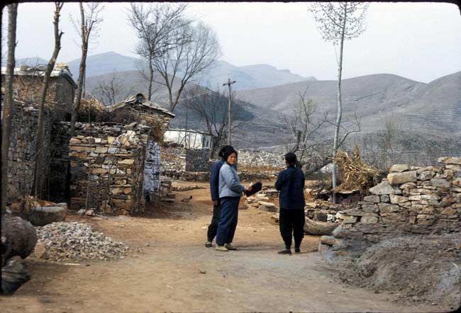 乡村里的中国农村