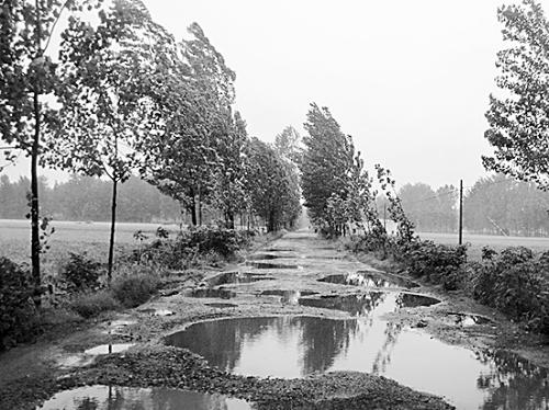 要修水泥路了,自己要挖沟埋排水管!