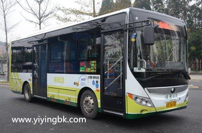 免费领个公交乘车红包,再坐车就能省钱了!